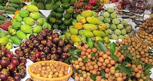 Trái cây tăng giá trước Tết  - traicay 1547451286 7840 1547451695 1200x0 310x165 - Trái cây tăng giá trước Tết
