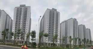Đâu là 'điểm nóng' của thị trường bất động sản Việt Nam 2019?  - photo1550395142967 1550395143351 crop 15503952697241109712989 310x165 - Đâu là 'điểm nóng' của thị trường BĐS VN 2019?