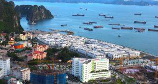 Giá bất động sản Quảng Ninh dự báo sẽ tăng mạnh  - photo1550933021436 1550933024092 crop 1550933073551315304005 310x165 - Giá BĐS Q.Ninh dự báo sẽ tăng mạnh