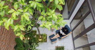 Nhà phố vẫn ngập tràn cây xanh bởi thiết kế độc  - photo 4 15514256969221492283441 crop 1551425735037759500137 310x165 - Nhà phố vẫn ngập tràn cây xanh bởi thiết kế độc