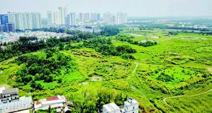 """Bất động sản TP HCM sẽ """"thông"""" trở lại?  - photo 1 1555118288180627660870 crop 1555118332210245285506 310x165 - BĐS thành phố Hồ Chí Minh sẽ """"thông"""" trở lại?"""