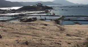 Đất Bắc Vân Phong chính thức được giao dịch trở lại  - dat tai bac van phong chinh thuc duoc giao dich tro lai 1560779848743365804678 crop 1560779853975415932451 310x165 - Đất Bắc V.Phong chính thức được giao dịch trở lại