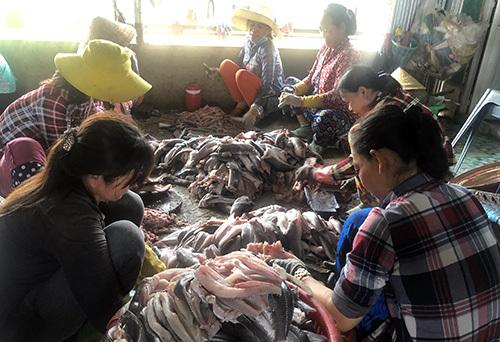 Làng khô Phú Thọ tạo việc làm cho nhiều lao động nông thôn. Ảnh: Cửu Long  - KHO 9091 1562921285 - Thương lái thu gom vảy cá ở miền Tây