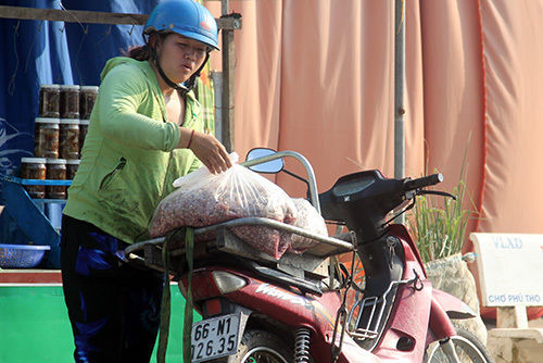 Một người thu gom vải cá với giá 4.000 - 5.000 đồng mỗi kg. Ảnh: Cửu Long  - THU GOM VC 9962 1562921285 - Thương lái thu gom vảy cá ở miền Tây