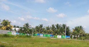 Báo động tình trạng lấy đất nông nghiệp phân lô, bán nền nhà thu lợi  - photo1564151339242 1564151339454 crop 15641513522871401337342 310x165 - Báo động tình trạng lấy đất nông nghiệp phân lô, bán nền nhà thu lợi