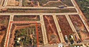 """""""Bí ẩn"""" lô đất 7.000 m2 giá hàng chục tỉ đồng được huyện đưa ra ngoài quy hoạch  - photo1583050816198 1583050817148 crop 1583050852503256332209 310x165 - """"Bí ẩn"""" lô đất 7.000 m² giá hàng chục tỉ đồng được huyện đưa ra ngoài quy hoạch"""
