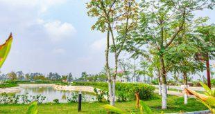 Biệt thự vườn - nhu cầu thiết yếu của giới trung lưu  - 1615777891368 67 0 1066 1598 crop 1615777897298 63751419743946 310x165 - B.thự vườn – nhu cầu thiết yếu của giới trung lưu