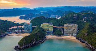 Flamingo Cát Bà Resorts trở thành điểm du lịch quốc tế  - 1616402081193 0 90 426 771 crop 1616402085103 63752029404964 310x165 - Flamingo Cát Bà Resorts trở thành điểm du lịch quốc tế